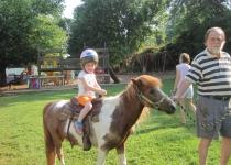pony-rides-sports-1